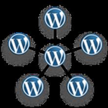 wordpress_multisite